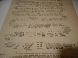 AFFICHE PHOTO DEFILE LE 14 JUILLET 1919 - Documents
