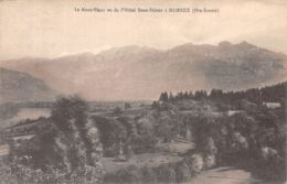73-MORNEX-N°R2139-F/0241 - Autres Communes