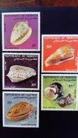 Djibouti 1983 Coquillage Shell Yvert 569-573 Légèrement Abimés Slightly Damaged - Djibouti (1977-...)
