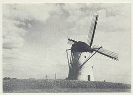 AK  Krefeld Verberg Egelsberger Mühle - Krefeld