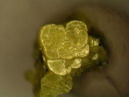 * AUTUNITE Xls, Luzy Near Autun, France * - Minerals