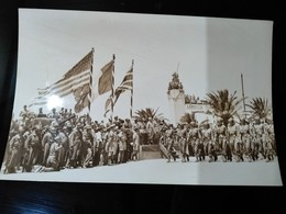 GAMBETTA VICTORY PARADE OF ALLIED NATIONS IN TUNIS  NORTH AFRICAN CAMPAIGN   FOTO DE PRESSE Brian L Davis Archive - Guerra, Militari