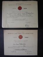 LOT Diplome Santé Publique Donneurs De Sang Bénévoles Argent 1964 Et 1970 PARIS - Diplômes & Bulletins Scolaires