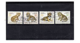 EDY 913 - DDR GERMANIA 1978 , Serie Usata A Tema FELINI - [6] Repubblica Democratica