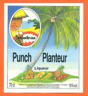 étiquette De Punch Planteur Liqueur Madras à Baie Mahault Antilles - 70cl - Rhum