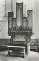 Nordhorn - Alte Reformierte Kirche - Orgel - Organe [D769 - Nordhorn