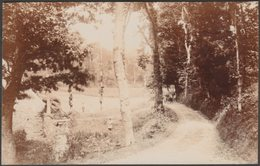 A Country Lane, Jersey, C.1910 - Photochrom RP Postcard - Jersey