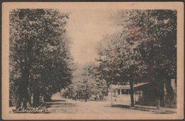 Christina Street, Sarnia, Ontario, C.1910 - Heliotype Co Postcard - Sarnia