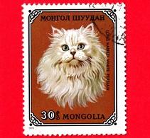 MONGOLIA - Usato - 1979 - Gatti Domestici - Persian White (Felis Silvetris Catus) - 30 - Mongolia