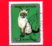 MONGOLIA - Usato - 1979 - Gatti Domestici - Siamese Cat (Felis Silvestris Catus) - 70 - Mongolia