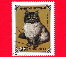 MONGOLIA - Usato - 1979 - Gatti Domestici - Smoky Persian (Felis Silvestris Catus) - 80 - Mongolia