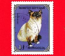 MONGOLIA - Usato - 1979 - Gatti Domestici - Burmese (Felis Silvestris Catus) - 1 - Mongolia