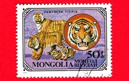 MONGOLIA - Usato - 1979 - Gatti Selvatici - Tiger (Panthera Tigris) - 50 - Mongolia