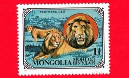 MONGOLIA - Usato - 1979 - Gatti Selvatici - Lion (Panthera Leo) - 1 - Mongolia