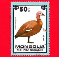 MONGOLIA - Usato - 1979 - Uccelli - Casarca - Ruddy Shelduck (Tadorna Ferruginea) - 50 P. Aerea - Mongolia