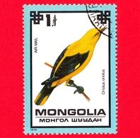 MONGOLIA - Usato - 1979 - Uccelli - Rigogolo - Golden Oriole (Oriolus Oriolus) - 1 P. Aerea - Mongolia