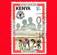 KENIA - Usato - 1981 - Giornata Mondiale Dell'alimentazione - FAO - World Food Day - Coltivazione Del Riso - 1 Sh - Kenia (1963-...)