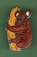 KOALA *** 0078 - Animals