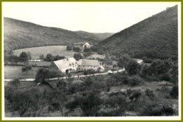 CPSM-Photothill-FELENNE- Moulin D'Olenne-verso :Hôtel De La Houille - Prop. Gerard-Chauvier - Beauraing
