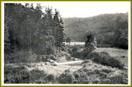 CPSM-Photothill-FELENNE- Vallée De La Houille,terrain De Camping-verso :Hôtel De La Houille Prop. Gerard-Chauvier - Beauraing