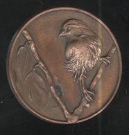 Médaille Les AmiEs Des Oiseaux - Le Creusot - Professionnels / De Société