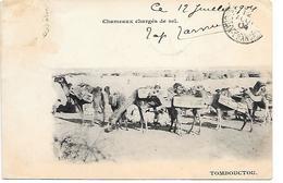 MALI - TOMBOUCTOU - CHAMEAUX CHARGES DE SEL   -  B318 - Mali