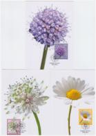 Liechtenstein 2015 - 3 Cartes Maximum - Fleurs - Série Complète (lie241) - Cartes-Maximum (CM)