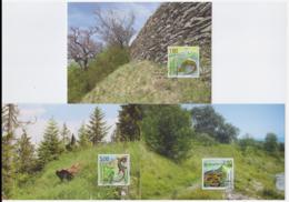 Liechtenstein 2015 - 3 Cartes Maximum - Reptiles - Série Complète (lie242) - Cartes-Maximum (CM)