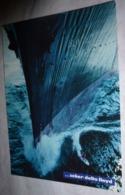 Carte Postale - ... Zeker Delta Lloyd (surfeur Devant L'étrave D'un Bateau) - Advertising