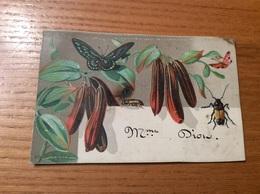 Marque-place Ch. D PARIS « Vanille, Papillon, Insecte » - Menus