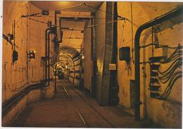 Moselle :  VECKRING :  Ligne  Maginot ,porte  Para-souffle - France