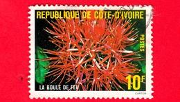 COSTA D'AVORIO - Usato - 1980 - Flora - The Fireball - 10 - Costa D'Avorio (1960-...)