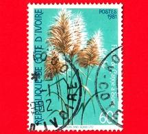 COSTA D'AVORIO - Usato - 1981 - Fiori Locali - Sugar Cane - 60 - Costa D'Avorio (1960-...)