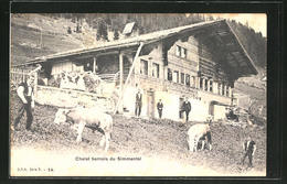 AK Simmenthal, Chalet Bernois Du Simmenthal - BE Berne