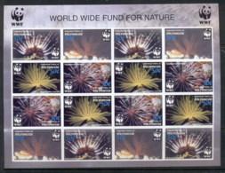 Micronesia 2005 WWF Micronesia Feather Stars IMPERF Sheetlet MUH - Micronesia