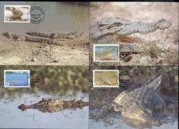 Palau 1994 WWF Estuarine Crocodile Maxicards - Palau