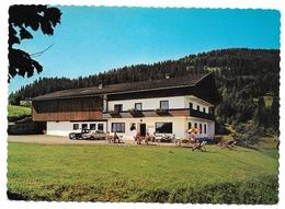 GOING Tirol HOLLENAUER-KREUZ Jausenstation - Kitzbühel