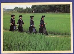 GUIZHOU ZENGFEN Photo Christian Michel Carte Des Annees 1988 ( Très Très Bon état ) TZ 611) - Chine