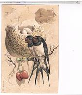 CPA OISEAUX  NID HIRONDELLES COEURS     1907         CA586 - Oiseaux