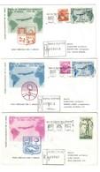 Italia 1961 Volo Speciale Del 6 Aprile  170 + 185  Lire Gronchi + 200 Lire Olimpiadi Su 3 Buste Diverse Cod.bu.225 - 6. 1946-.. Repubblica