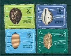 Tokelau Is 1974 Cowrie Shells MLH Lot43425 - Solomon Islands (1978-...)