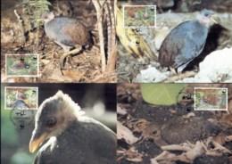 Tonga Niuafo'ou 1992 WWF Niuafo'ou Megapode, Bird Maxicards - Tonga (1970-...)