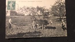 CPA  En Corrèze - Scène Champêtre Le Labourage - Cultivation