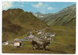 Autriche -- Tirol -- St CHRISTOPH AM ARLBERG --1800m--Vue Générale   ( Vache Au 1er Plan) - Autriche