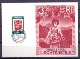 Liechtenstein 1980: Postmuseum Löwenwirtin Lukretia Rheinberger (1868-1934) Zu 688 Mi 750 Yv 691 Auf MK 17 (Zu CHF 2.50) - Vins & Alcools