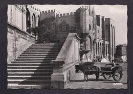 CPSM 84 - AVIGNON - Le Palais Des Papes - TB GROS PLAN ATTELAGE CALECHE PONEY Avec Enfant 1962 FLAMME - Avignon