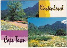 Kirstenbosch - The Botanical Garden - Cape Town - (South Africa) - Zuid-Afrika
