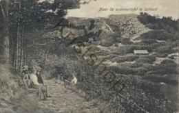 Schoorl - Naar De Oriënteertafel [C750) - Schoorl