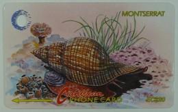 MONTSERRAT - 7CMTB - $20 - MON-7B - True Tulip Snail - 1992 - Used - Montserrat