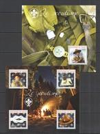 RR585 2014 NIGER SCOUTING NATURE SCOUT BOY LE SCOUTISME 1KB+BL MNH - Scouting